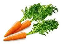 Оборудование для переработки моркови