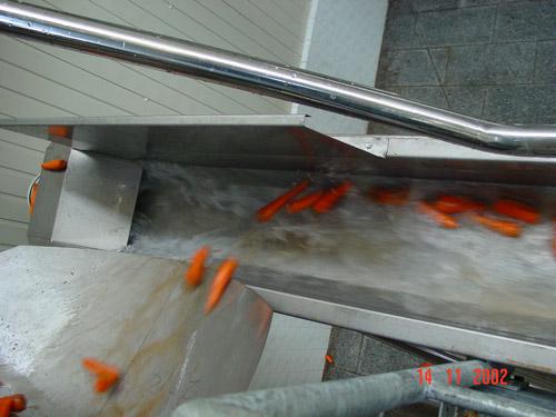 Перемещение моркови потоком воды